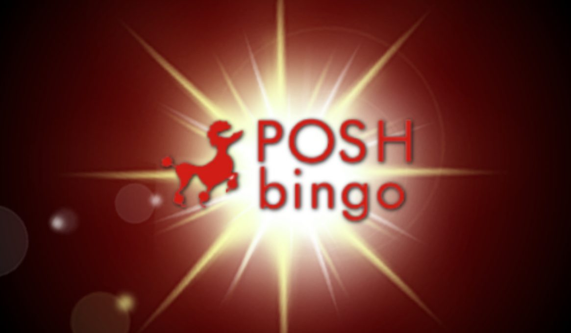 Posh Bingo Review