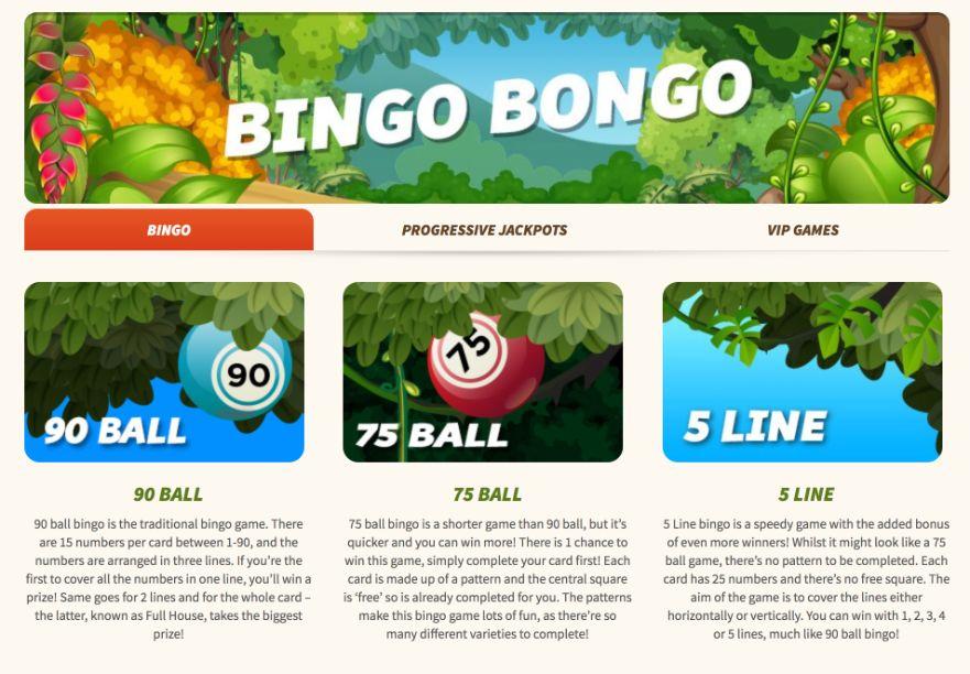 monkey bingo bingo games