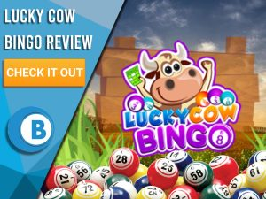 "Background of field with bingo balls and Lucky Cow Bingo. Blue/white square to left with text ""Lucky Cow Bingo Review"", CTA below and Boomtown Bingo logo beneath."