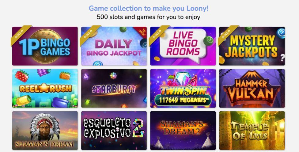 loony bingo slots