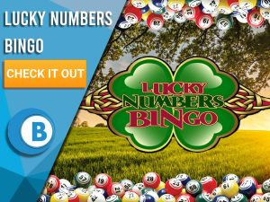 "Background of Field with Bingo Ball border and Lucky Numbers Bingo logo. Left is blue/white square with text ""Lucky Numbers Bingo"", CTA below that and BoomtownBingo logo under that."