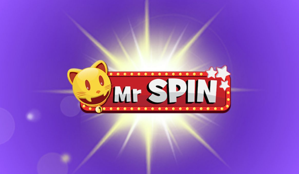 Mr Spin Review