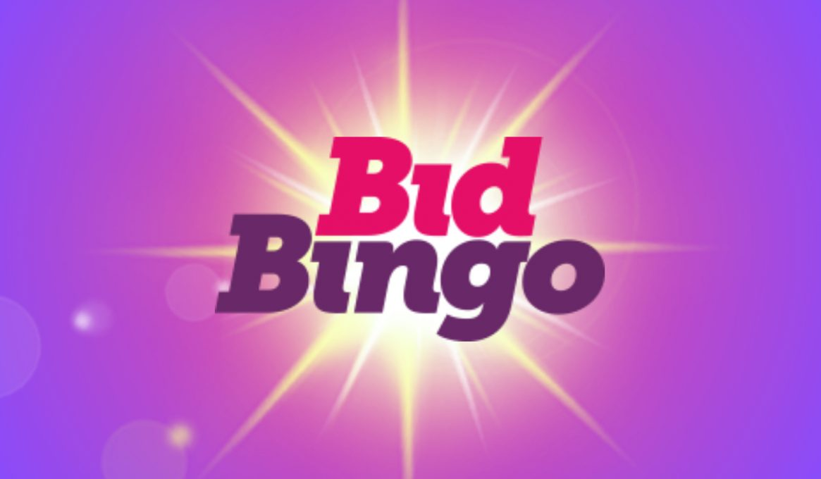 Bid Bingo Review