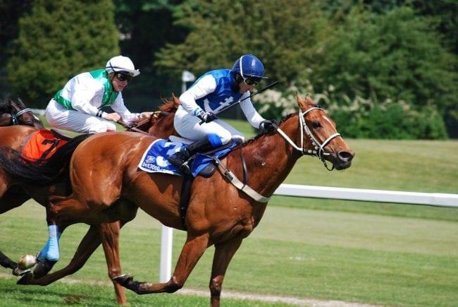 Leicester Race Course