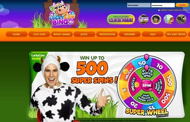 Lucky Cow Bingo Reviews