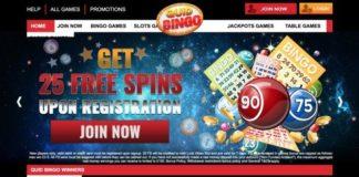 quid bingo review