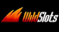 Wild Slots Logo
