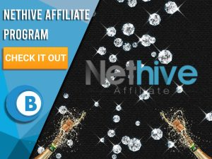"""Black background with 2 champagne bottles, diamonds raining and NetHive logo. Blue/white square to left with text """"NetHive Affiliate Program"""", CTA below it and BoomtownBingo logo underneath that."""