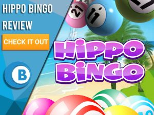 "Background of beach with big bingo balls and Hippo Bingo logo. Blue/white square with text to left ""Hippo Bingo Review"", CTA below and Boomtown Bingo logo beneath that."