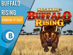 """Background of Safari with Buffalo Rising logo and a Buffalo charging through. Blue/white square with text """"Buffalo Rising Slots"""", CTA below that and BoomtownBingo logo."""