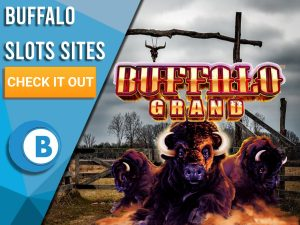 "Texas Ranch Background with Buffalo's running with Buffalo Slots Logo. Blue/white square with text ""Buffalo Slots Sites"", CTA below and BoomtownBingo logo beneath that."