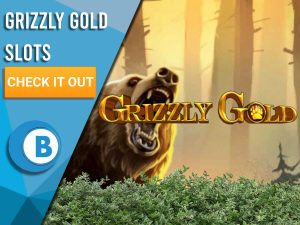 """Background of forest with bushes at bottom, bear and Grizzly Gold Logo. Blue/white square with text """"Grizzly Gold Slots"""", CTA below that and BoomtownBingo logo."""