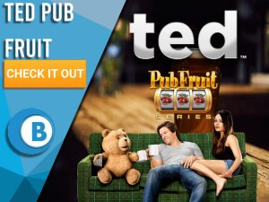 """Background of pub with three characters from ted on a sofa with Ted Pub Fruit logo. Blue/white square to left with text """"Ted Pub Fruit"""", CTA below that and BoomtownBingo Logo under that."""