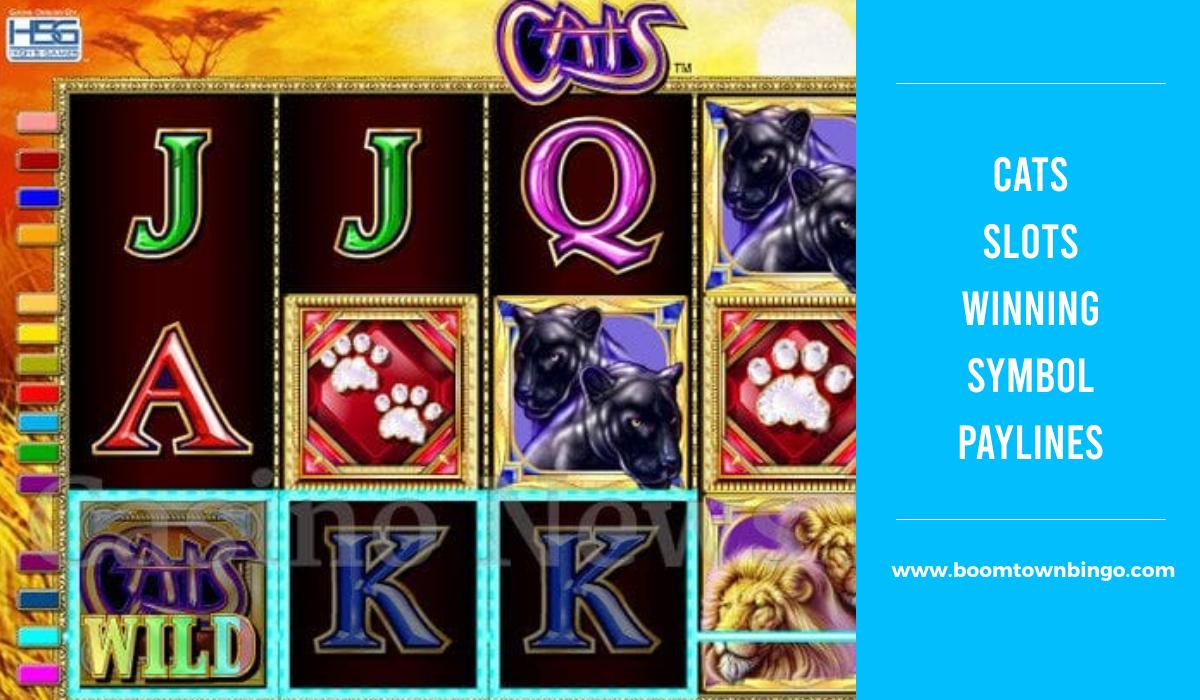 Cats Slots Symbol winning Paylines