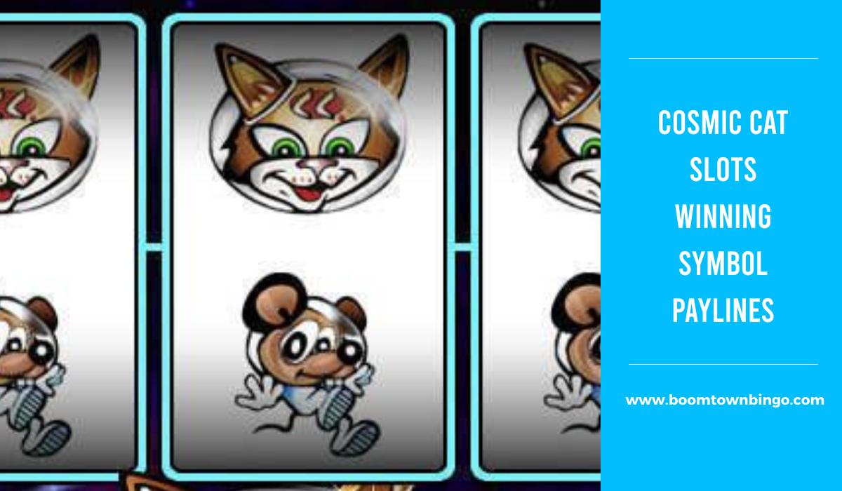 Cosmic Cat Slots Symbol winning Paylines