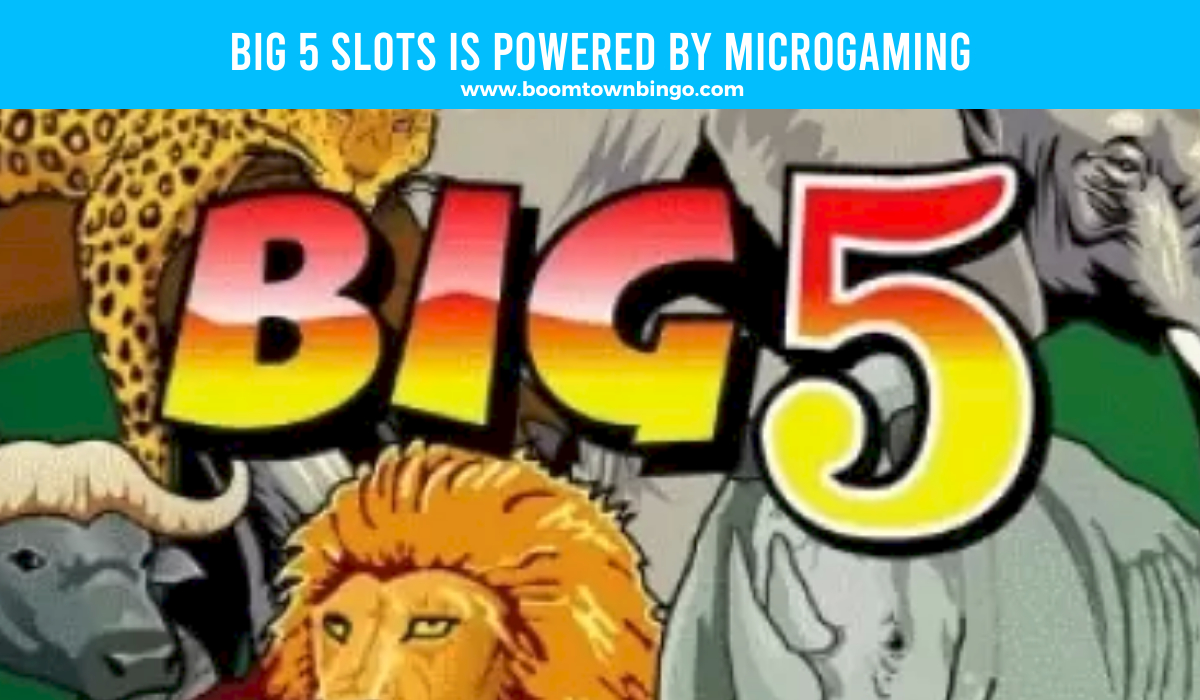 Big 5 Slots is made by Microgaming