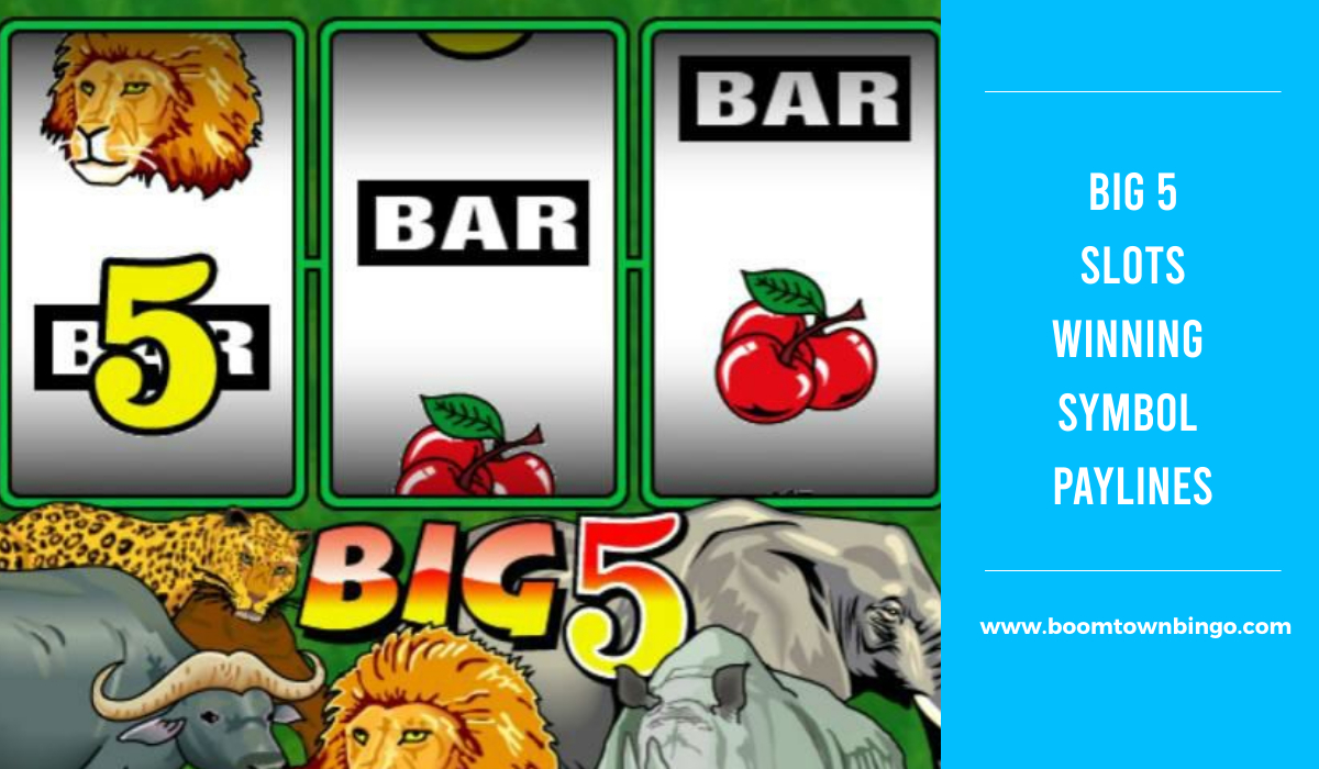 Big 5 Slots Symbol winning Paylines