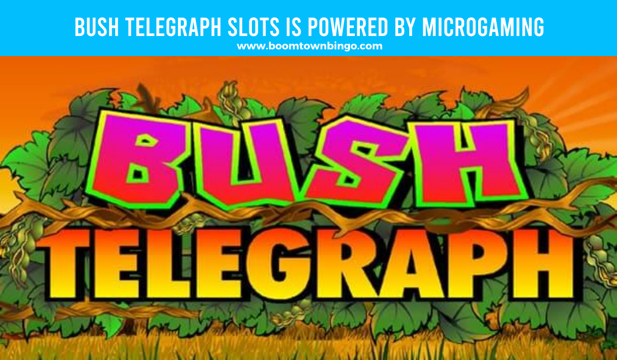 Bush Telegraph Slots is made by Microgaming