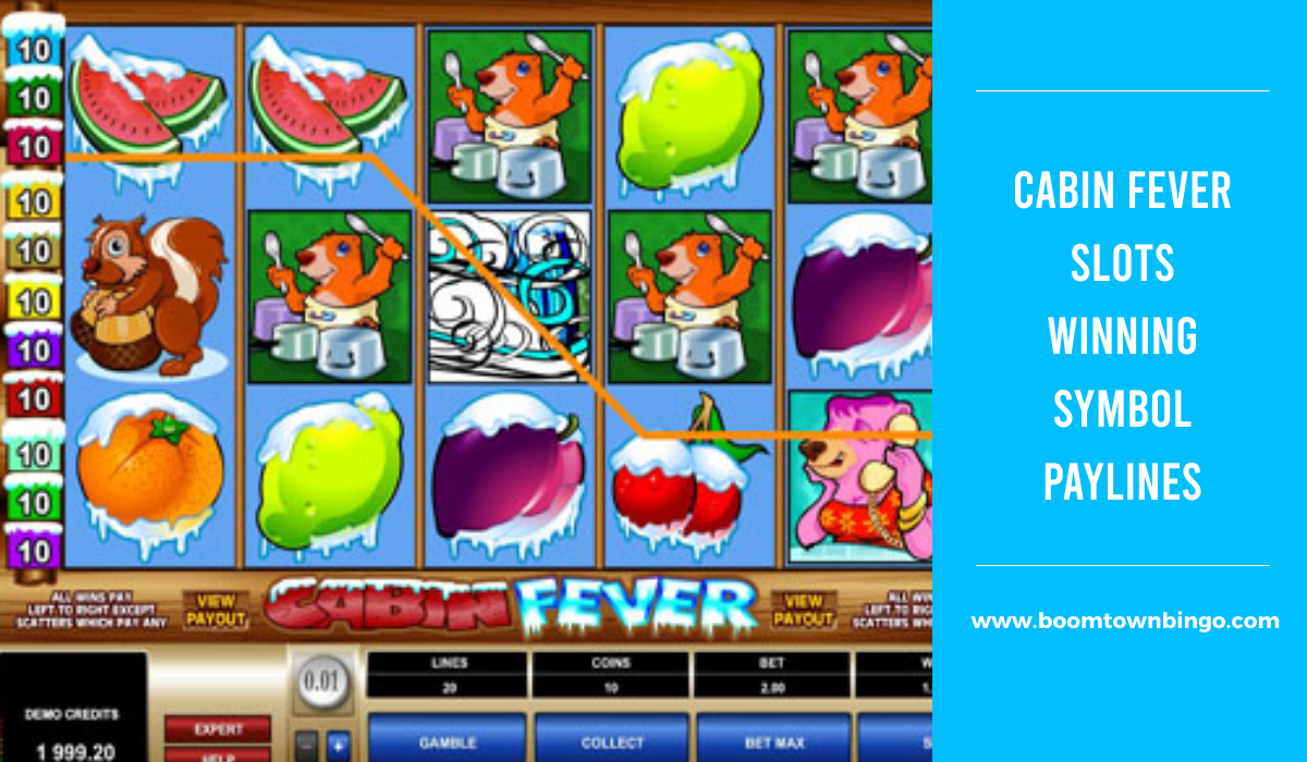 Cabin Fever Slots Symbol winning Paylines