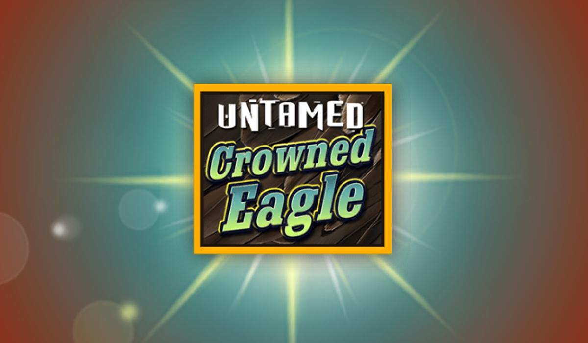 Cosmic bingo soaring eagle casino richest online casino owners