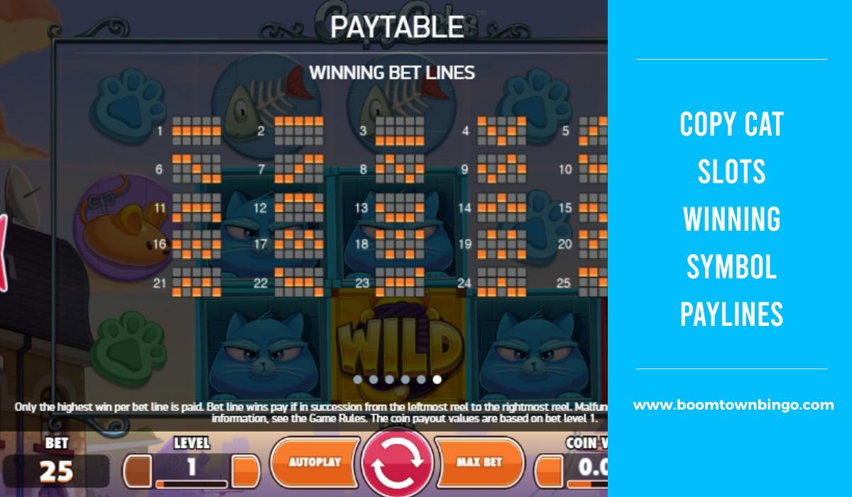 Copy Cat Slots Symbol winning Paylines