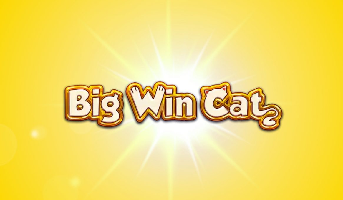 Big Win Cat Slot Machine