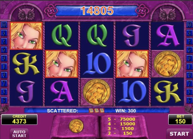 Book of Fortune Slots Gameplay