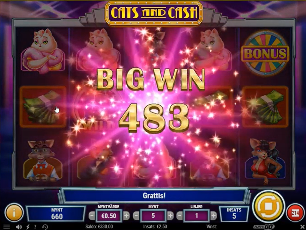 Cats and Cash Slot Win