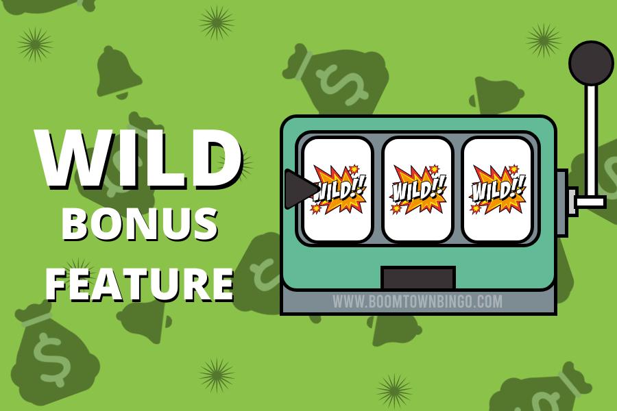 Wild Bonus Feature